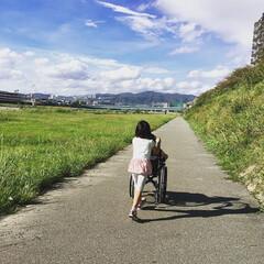 新一年生/小学生/一年生/女の子ママ/男の子ママ/家族/... 車椅子の息子と娘。それぞれ学校は違うけれ…