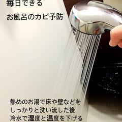 大掃除/掃除/カビ予防/お風呂掃除/お風呂/フォロー大歓迎/... 毎日できる簡単お風呂のカビ予防💨 ポイン…