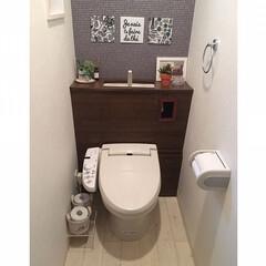 トイレインテリア/タンクレストイレ/タンクレス風/トイレ/フォロー大歓迎/ペット仲間募集/... タンクレストイレにしたくて、だけど大掛か…