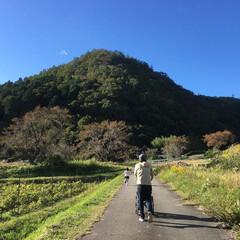 家族でお出かけ/空/景色/フォロー大歓迎/おでかけ/旅行/... 黒豆収穫に参加しました。緑の畑や山に真っ…