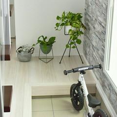ソストレーネグレーネ/植物のある暮らし/エントランス/土間スペース/玄関/土間/... 玄関には植物を置いてお客様をお迎えしてい…