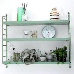 ローゼンダール/ケーラー/アルネヤコブセン/植物のある暮らし/植物/インテリア/... 玄関近くの飾り棚ディスプレイ✨