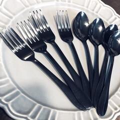 チタンコーティングスプーン/セリア新商品 またまたセリア‼︎ ティースプーンタイプ…