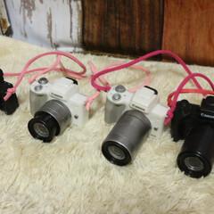 カメラ女子/ガチャガチャ/犬好きな人と繋がりたい/わんこなしでは生きていけません/ワンコ/いぬ/... カメラ4台に なりました(♡´艸`)あは (2枚目)