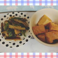 夕飯のおかず 昨日の夕飯( ˶ˆ꒳ˆ˵ ) 那須とピー…