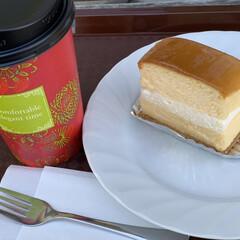 チーズケーキ/フォロー大歓迎/グルメ/スイーツ/甘党大集合 カフェテラスでゆっくりした日を過ごしてパ…