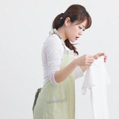 生活の知恵/洗濯/食べこぼし/染色/染め物/桂屋ファイングッズ/...