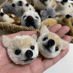 ハンドメイド/手作り/ハンドメイド作品/LIMIA手作りし隊/第2回わたしのハンドメイド/犬ぽんぽん/... 犬ぽんぽんを作りました。 毛糸でぽんぽん…(3枚目)