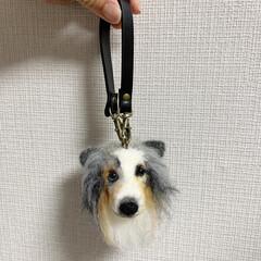ハンドメイド/手作り/ハンドメイド作品/LIMIA手作りし隊/第2回わたしのハンドメイド/犬ぽんぽん/... 犬ぽんぽんを作りました。 毛糸でぽんぽん…(5枚目)