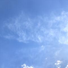 イマソラ/空/2018/フォロー大歓迎/冬/年末年始/... 冬の空。  年末キャンプへ行ってきました…