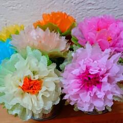 お花/ペーパーフラワー/インテリア/ハンドメイド フラワーペーパーで作ったお花💐