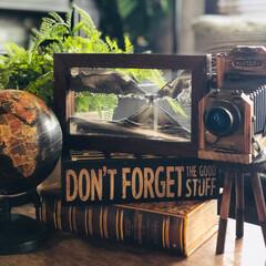 サンドピクチャー/ブック型ボックス/カメラ型オブジェ/地球儀/男前インテリア雑貨/男前雑貨/... ニトリでサンドピクチャー買いました。