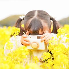 孫/玩具/木のおもちゃ/キッズ/キッズカメラ/おでかけ/... 孫ちゃんズのキッズカメラをDIYしてプレ…(1枚目)
