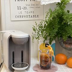 カフェタイム/コーヒーのある暮らし/インドアグリーン/タイル/UCCドリップポッド/アイスコーヒー/... Francfrancのダブルウォールグラ…(1枚目)