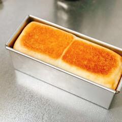 アンティーク/ケーキクーラー/幸せ/あさ/手作りパン/ミニ食パン/... パパちゃんが焼いてくれたミニ食パンで朝か…(1枚目)