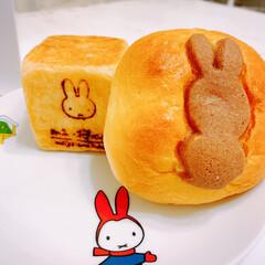 朝ごはん/お土産/娘/みっふぃー桜ベーカリー/パン屋さん/わたしのごはん/... 娘が買ってきてくれた🍞で 朝ごはん(*^…
