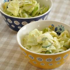 サラダ/簡単/節約/時短/手軽/レシピ/... お料理苦手さんも、手間をかけて作りたくな…