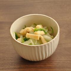 おかず/秋/おうちごはん/グルメ/フード 【白菜と油揚げの白だし煮】  秋ですね!…