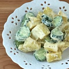 サラダ/お気に入り/食器/お弁当/キッチン/キッチン雑貨/... お気に入りの小皿です。サラダを入れたり、…(1枚目)