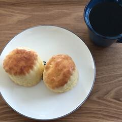 スコーン/カフェ/心の癒し/おでかけ/暮らし お気に入りのカフェで買ったスコーン。家か…(1枚目)