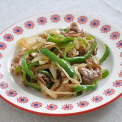 炒める/冷凍/時短料理/時短家事/時短/わたしのごはん 定番野菜と豚こまを炒めるだけの、簡単おか…