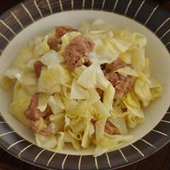 簡単/フライパン/おかず/おうちごはん/グルメ/フード 《キャベツとひき肉の炒めもの》 ひき肉に…