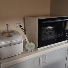 キッチン/家電/Panasonic/ビストロ/象印/炎舞炊き お気に入りのシロモノ家電。 炊飯器とスチ…