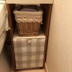 ハンドメイド雑貨/トイレ/配線隠し/簡単DIY/トイレ収納/最近買った100均グッズ/... 失礼😅おトイレの写真です。 今朝saku…(4枚目)