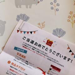 Aconitum |  Pattern.Oku リメイクシート | Harokka(壁紙)を使ったクチコミ「モニター当選しました。 Harokkaさ…」(4枚目)