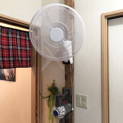 洗面所/壁掛け扇風機/アイリスオーヤマ/ラブリコ/暮らし/DIY収納 夏の洗面所暑いんです。ドライヤー中が暑す…
