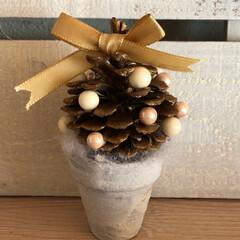 クリスマス雑貨/クリスマス/松ぼっくりツリー/たこ焼き/リミアな暮らし/ダイソー/... またまた、うちにあったもので 松ぼっくり…