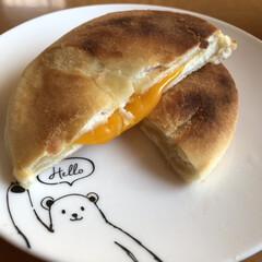 Graphite Toaster   アラジン(電子レンジ)を使ったクチコミ「業務スーパーのチーズホットク。 解凍して…」(2枚目)