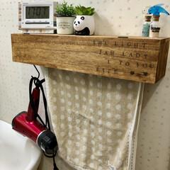 フェイクグリーン/洗面所/洗面所インテリア/収納/雑貨/100均/... ドライヤー収納。 備え付けの普通のタオル…