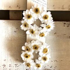 ガーデニング/リースのある暮らし/かまぼこ板リメイク/かまぼこ板/花かんざしドライ/リース/... 花かんざしのミニミニリース。 かまぼこ板…