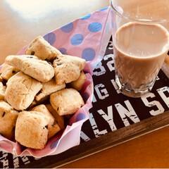 ホットケーキミックス/タピオカ/タピオカミルクティー/チョコチップスコーン/令和元年フォト投稿キャンペーン/フォロー大歓迎/... タピオカミルクティーと、 簡単、ホットケ…