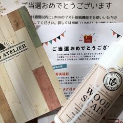 ウッドステイン ホワイト WS-01(180ml)   和信ペイント(Washi Paint)(ニス、ステイン)を使ったクチコミ「モニター当選💕 和信ペイントさんの「ウッ…」(4枚目)