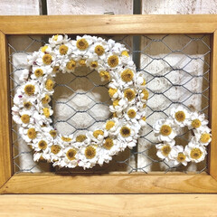 シーサーの日/シーサー/リース/花かんざしリース/花かんざし/ハンドメイド雑貨/... セリアのメッシュフレームに、 花かんざし…