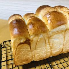 手作りパン/パン作り/あいりおーのお店みたいなパンレシピ/シンプル食パン/リッチ食パン/スイートブール/... 夏休み5日目☀️ 夢の1人ランチはいつに…(3枚目)