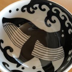 みのる陶器 中皿 アンティーク ネイビー&ベージュ 直径20cm 2色入(皿)を使ったクチコミ「食器入れかえ大作戦😆最後😆 白波くじら🐋…」(3枚目)
