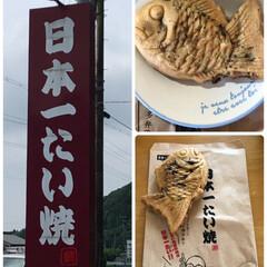 たい焼き/日本一たい焼き/暮らし/今日のおやつ/あんこ たい焼きを買いにドライブ〜🚗 10時のお…