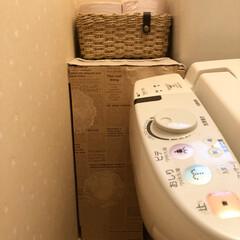 ハンドメイド雑貨/トイレ/配線隠し/簡単DIY/トイレ収納/最近買った100均グッズ/... 失礼😅おトイレの写真です。 今朝saku…(5枚目)