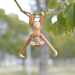 木のおもちゃ/サル/猿/カイボイスンモンキー/風景/雑貨/... カイボイスンモンキー来た〜(๑•ω•๑)…
