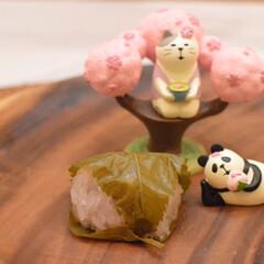 わがし/桜餅/一眼レフのある生活/一眼レフのある暮らし/一眼レフ/至福のひととき/... 桜の季節は過ぎたけど 桜餅大好き💖(1枚目)