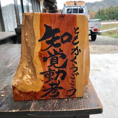 木彫り/オブジェ/インテリア 木彫り作品 いろいろ(1枚目)