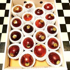 美味しい/南国フルーツ/屋久島/時計草/パッションフルーツ/フルーツ/... 屋久島の時計草〜🍊🍋🍐🍏🍌🍑🍇 パッショ…(1枚目)