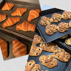 スィーツ/スィーツ大好き/スィーツ男子/パティシエ勉強中/パティシエ/令和元年フォト投稿キャンペーン/... 息子s'パン 今日はパンを作りました🍞 …