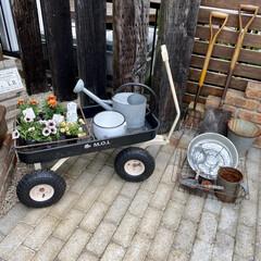 ガーデンディスプレイ/ガーデン雑貨/庭/雑貨好き/雑貨 花を植え替えようと思いましたが 小雨が降…(1枚目)
