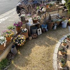ディスプレイ/マイガーデン/並べるのが好き/ガーデン雑貨/ガーデニング/庭/... 今日こそ庭の模様替え!(๑•̀ •́)و…