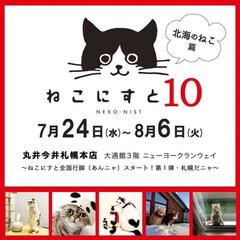 パックちゃん/マロンちゃん/ソマリ/ねこにすと展/ねこにすと10札幌/猫派/... いよいよ今度の水曜日からねこにすと10が…(1枚目)
