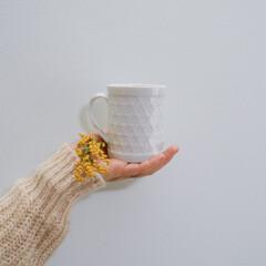 マグカップ/ティータイム/花のある暮らし/ミモザ/壁紙/わたしのお気に入り リビングの壁紙は薄いブルー。  打ち合わ…